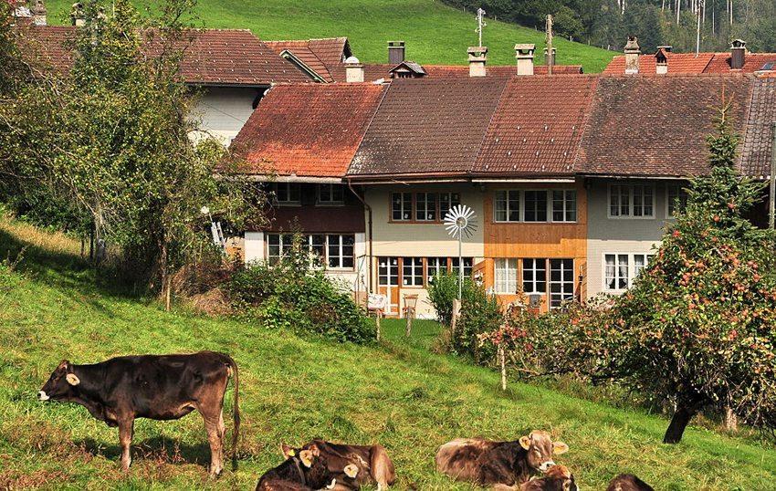 Flarzhäuser sind vor allem im Zürcher Oberland bekannt. (Bild: Roland zh, Wikimedia, CC)
