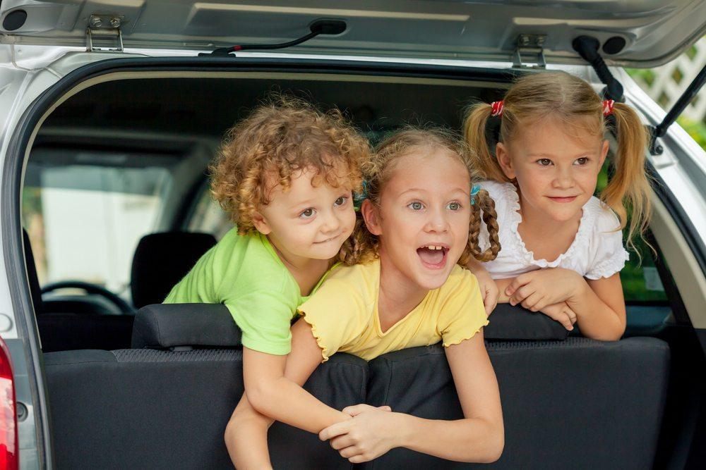 Das Kinderhotel Alpenrose bietet das ganze Jahr über vielfältige Möglichkeiten, tolle Ferien zu verleben. (Bild: altanaka / Shutterstock.com)