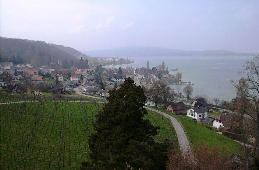 Schloss Arenenberg – Ausblick auf den Bodensee (Bild: Muesse, Wikimedia, CC)