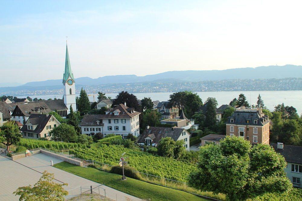 Rebberg am Buchholzhügel und die reformierte Kirche Zollikon (Bild: Adrian Michael, Wikimedia, GNU)