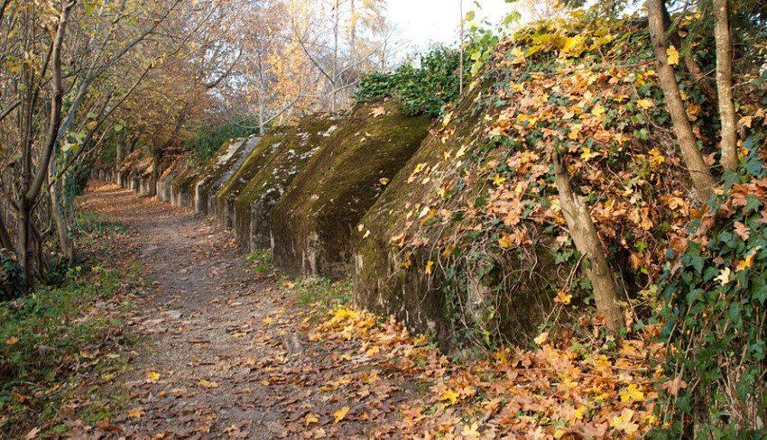 Tobleronen – die Natur hatte jahrzehntelang Zeit, die schmucklosen grauen Betonspitzen mit Grün zu überziehen. (Bild: Ludovic Péron, Wikimedia, CC)