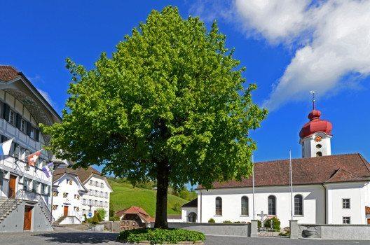 Historischer Dorfkern Luthern (Bild: © Pius Häfliger, Luthern)