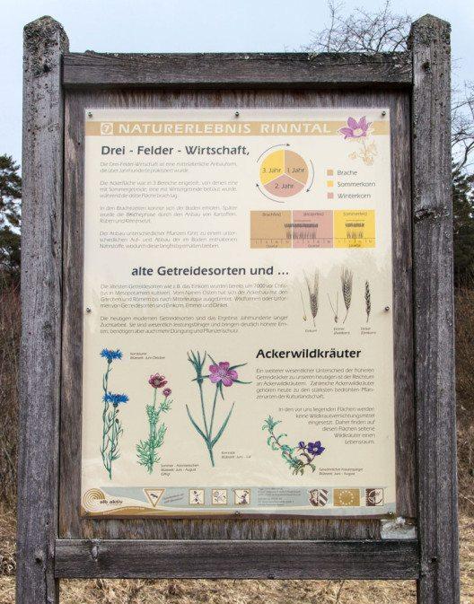 Dreifelderwirtschaft war der typische Ackerbau des Hochmittelalters. (Bild: Derzno, WIkimedia, CC)