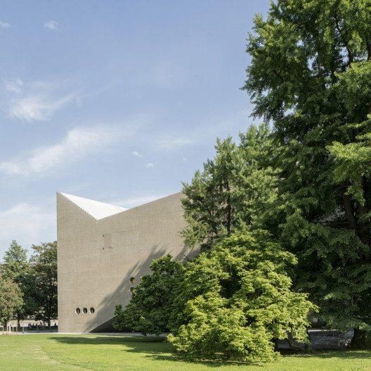 Neubau mit Ginkobaum (Bild: Roman Keller)