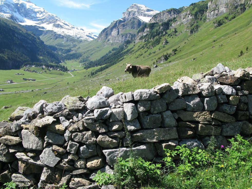 Die Stiftung Landschaftsschutz Schweiz unterstützt den Erhalt der wertvollen Kulturlandschaft des Urnerbodens UR. (Bild: © Michael Dipner)