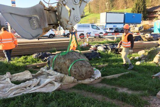 Bergung des schätzungsweise 2–3 t schweren Steinblocks. Der Stein soll zu einem späteren Zeitpunkt öffentlich aufgestellt werden. (Bild: © Archäologischer Dienst des Kantons Bern, Yann Mamin)