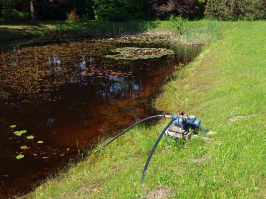 Eine leistungsfähige Teichpumpe wählen (Bild: Grandpa - shutterstock.com)