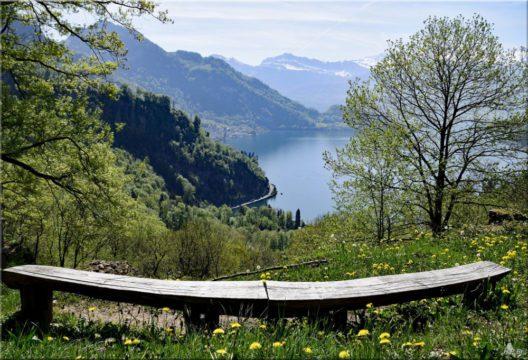 Lehnenweg am Vierwaldstättersee (Bild: © Hans Peter Bruder)